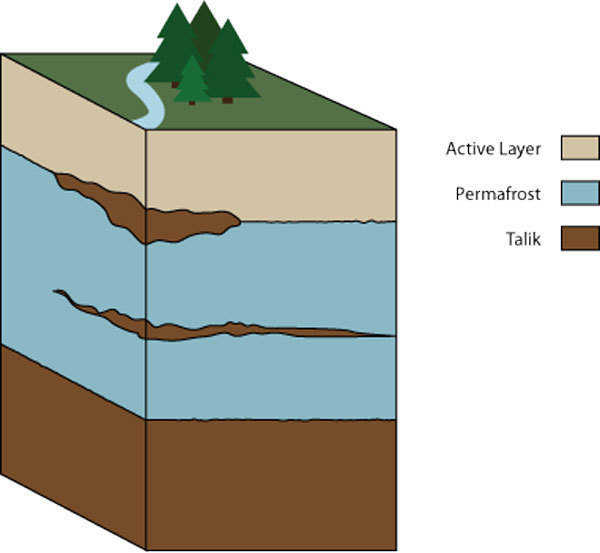 Permafrost layers — The active layer will melt and freeze as the seasons change. While the permafrost stays permanently frozen and the talik never gets cold enough to freeze.