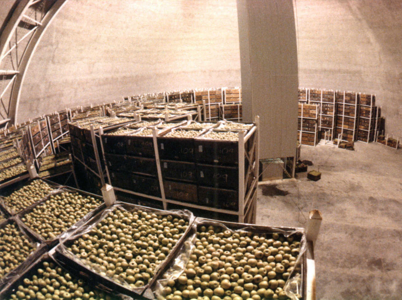 Product Stacking — Product stacking inside a Dome allows for a circular aisle along the inside perimeter of the Dome, as well as a center aisle. This allows for better utilization of space and travel time to load and retrieve product is minimal for both automated and manual retrieval.