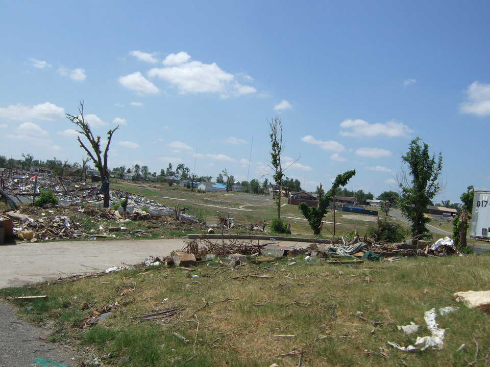 The tornado easily uprooted most of the trees.